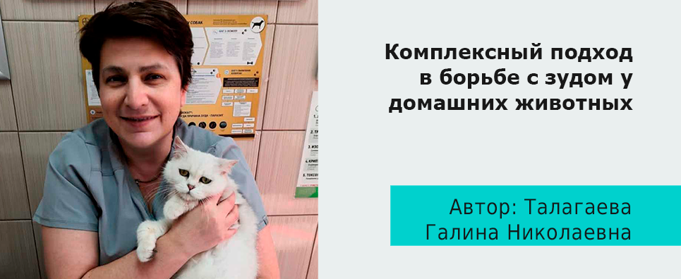 Комплексный подход в борьбе с зудом у домашних животных